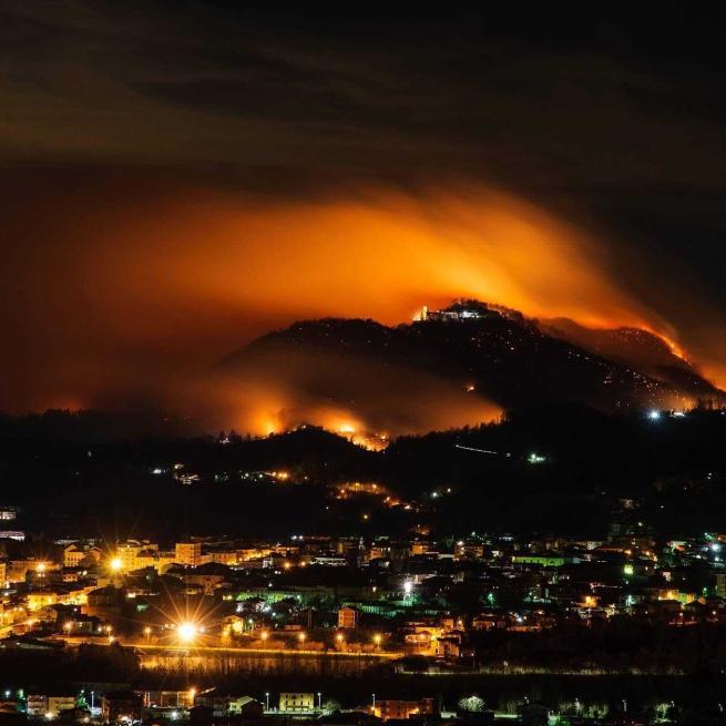 NEWS: URGENTE. Sacro Monte di Belmonte, salvare il parco dopo l'incendio